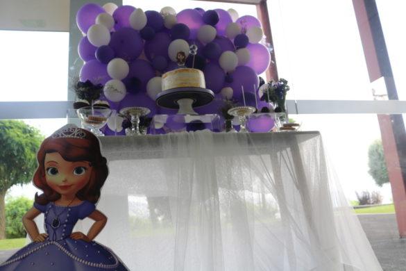 Festa de Aniversário Gabi